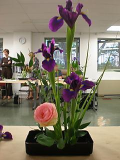 Ikeban arrangement