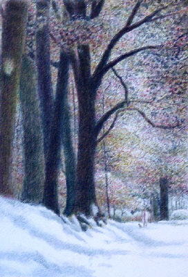 Harold altman early snow